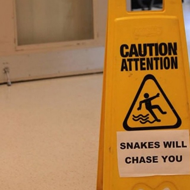 #watchout #snakes #habal