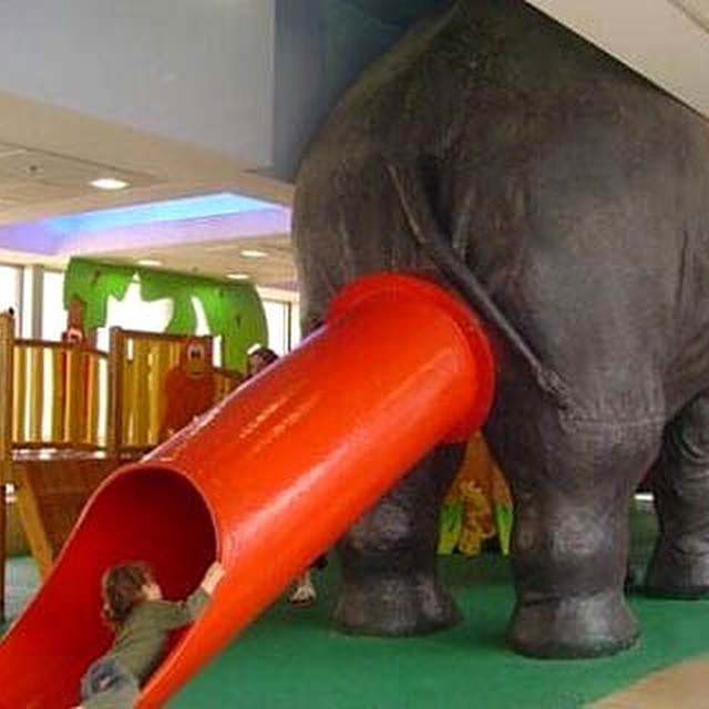 #elephant #children #playground #fail #HabaLdotCom #هبل_دوت_كوم
