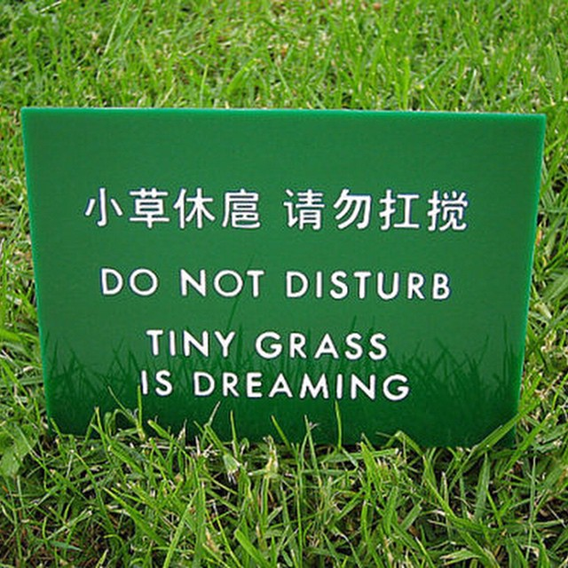 #signs #translation #grass #habal