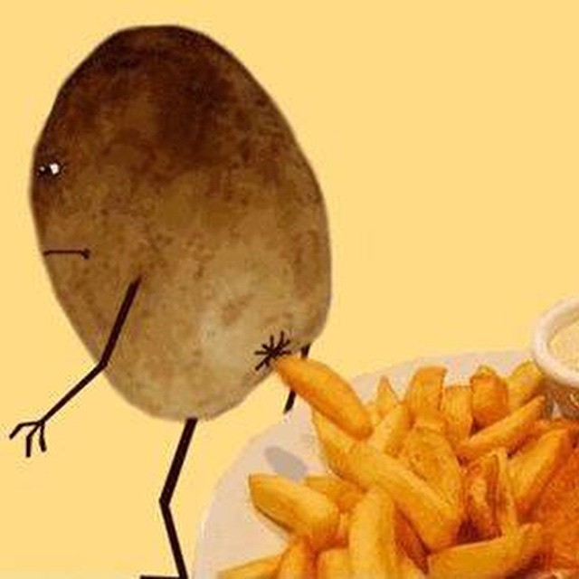 Where #fries come from! #frenchfries #potatoes #neveragain #habal #هبل #HabaLdotCom #هبل_دوت_كوم