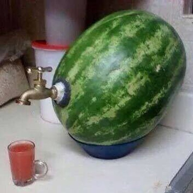 #watermelon #tap #genius #habal #هبل #HabaLdotCom #هبل_دوت_كوم