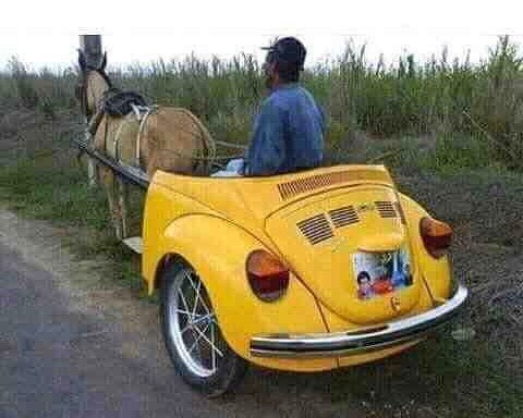 #latest #VW #onehorsepower #mule #strength #habal #هبل #habaldotcom