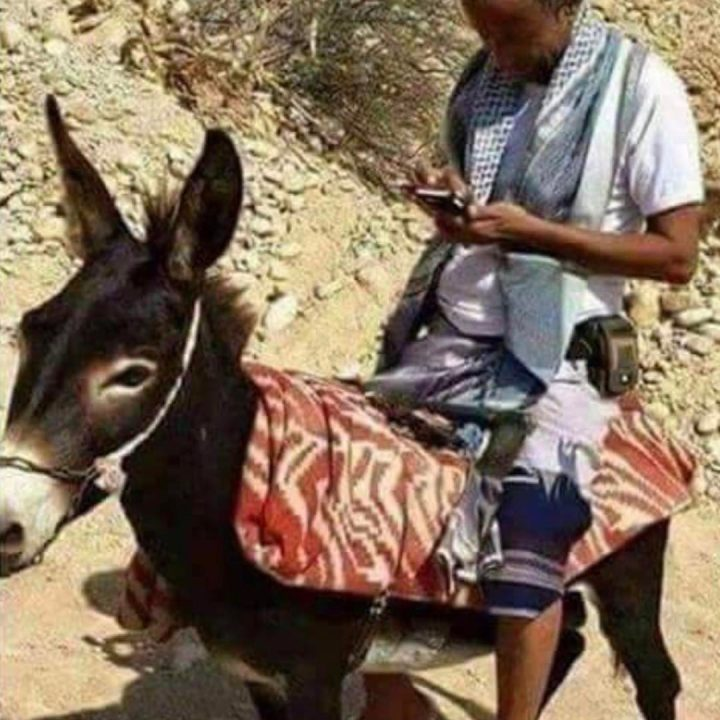 #sayno to #texting and #driving even on a #donkey #habal #هبل #habaldotcom