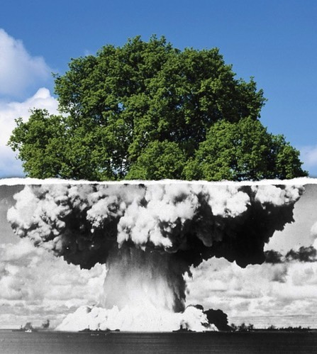 #atomic #tree of #habal #هبل #habaldotcom